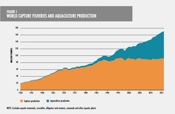 Pesca comercial y producción de pescado con acuicultura medida en millones de toneladas